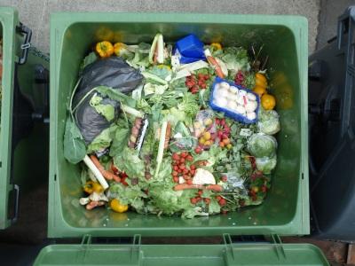food-waste_orig